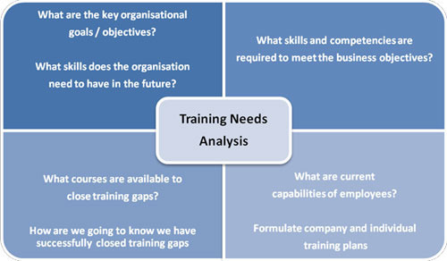 Training Need Analysis In Noida Sector  By Mount Talent Consulting