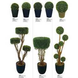 hotel artificial plant - view specifications & details of artificial Artificial Ornamental Plants