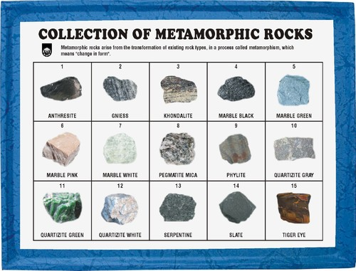 Collection Of 15 Metamorphic Rocks Rocksmins The Geological