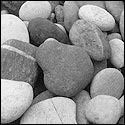 Grey Colored River Bed Pebbles