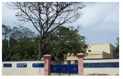 Higher Secondary School