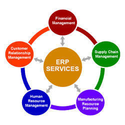 ERP Solution Services