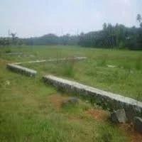 Land & Plot Properties Service