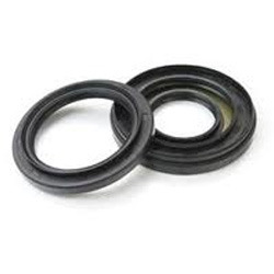 Reinforce PTFE Stem Seals