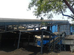 Coal Feeding Conveyor