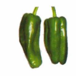 Green Capsicum Seeds