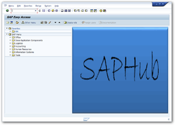 SAP IDES Online Server Access for All Modules