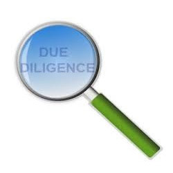 Business Due Diligence Service