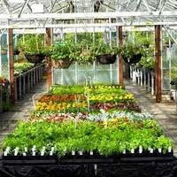 Gardening & Horticulture Services