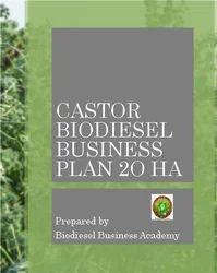 Castor Biodiesel Business Plan 20 Ha