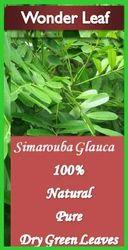 Simarouba Green Dried Leaves, Na