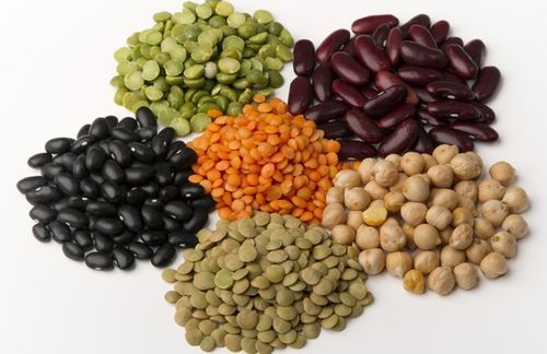 Dry beans, सूखी बीन in Makarba, Ahmedabad , Prem International Agri  Services Private Limited   ID: 8789837348