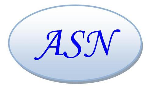 ASN Engineering & Consultancy,...