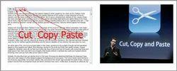 Data Copy Paste Services