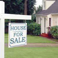 Property Sale And Purchase Services