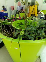 Plastic Tree Planters