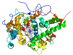 Lactoperoxzyme Enzymes