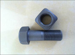 Track Shoe Bolt Nut