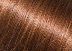 N5 Golden Brown Henna Hair Color Amani International Mumbai Id