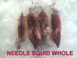 Needle Squid Whole Sea Foods
