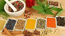 Ayurveda Health Tourism