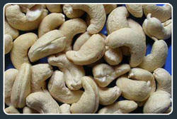 Cashew Kernels Nuts