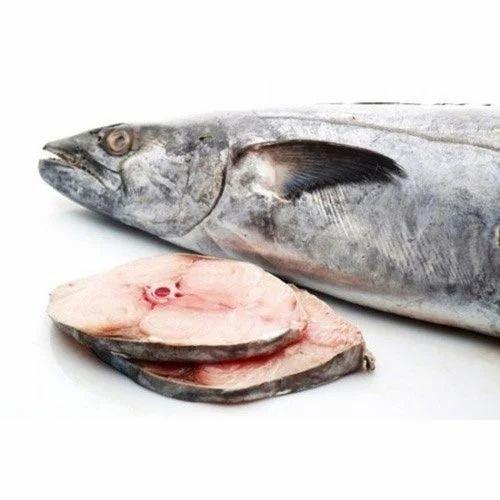 frozen seer fish steaks tuna steak ������ �������� ������� ��������