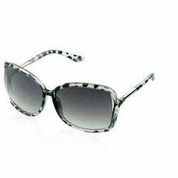 a737b0357f Alvaro Castagnino Admiring Sunglasses for Women