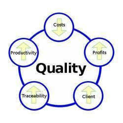 Quality Management consultancy ISO 9001 EMS-14001 and OHSAS 18001