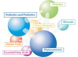 ProtaMin Mix ( Amino Acids Based Multi Mineral Chelates )