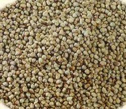 Bajra Whole Seed