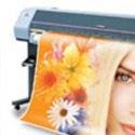 Banners And Flex Printing
