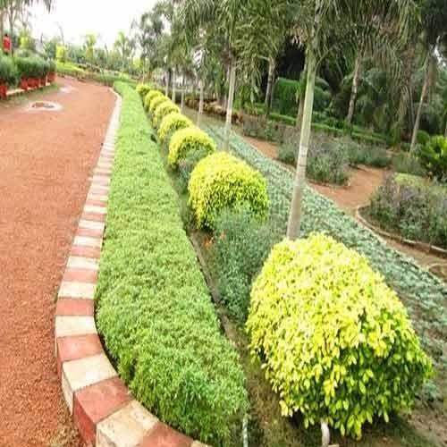 Marvelous Green Garden Landscapes. Landscape Structure And Designing Part 8