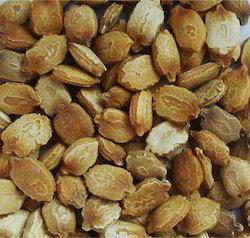 Bitter Gourd Seeds, For Farming, Pack Size: 100-250 Gram