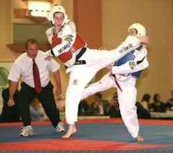 Back Kick Training Institutes