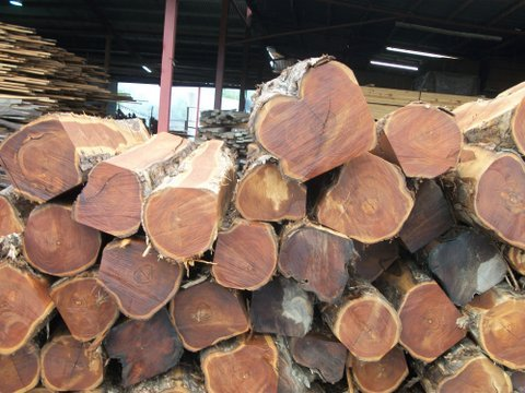 Teak Wood For Furniture Making Teak Wood Wholesale
