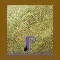 Zeera Green Natural Slate Stone