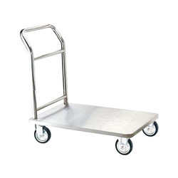 Stainless Steel Platform Trolley, Capacity: 100 Kg
