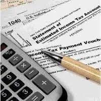 VAT/Professional Tax Service