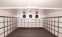 Revamp & Installation Service
