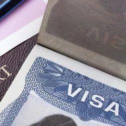 Visa Process & Immigration