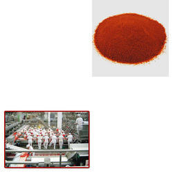 Tomato Powder for Food Industry