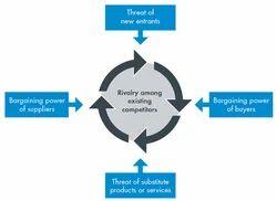 Industry Analysis &Business Strategy Development