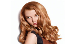 Grey Coverage Hair Colour Services