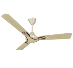 Nicola Ceiling Fan (Havells)