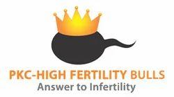 Pregnancy King Conception