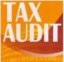 Tax Auditing