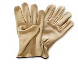 Premium Waterproof Gloves