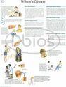 Gastroenterology Charts