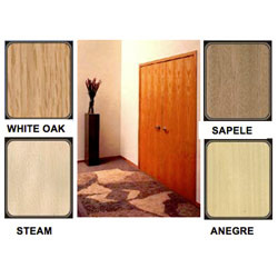 Veneered Door Suppliers Manufacturers Amp Traders In India